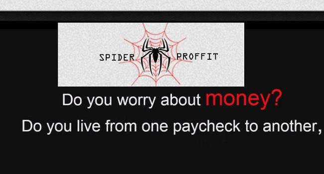spider profits