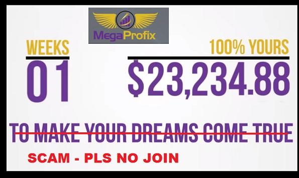 mega profix software